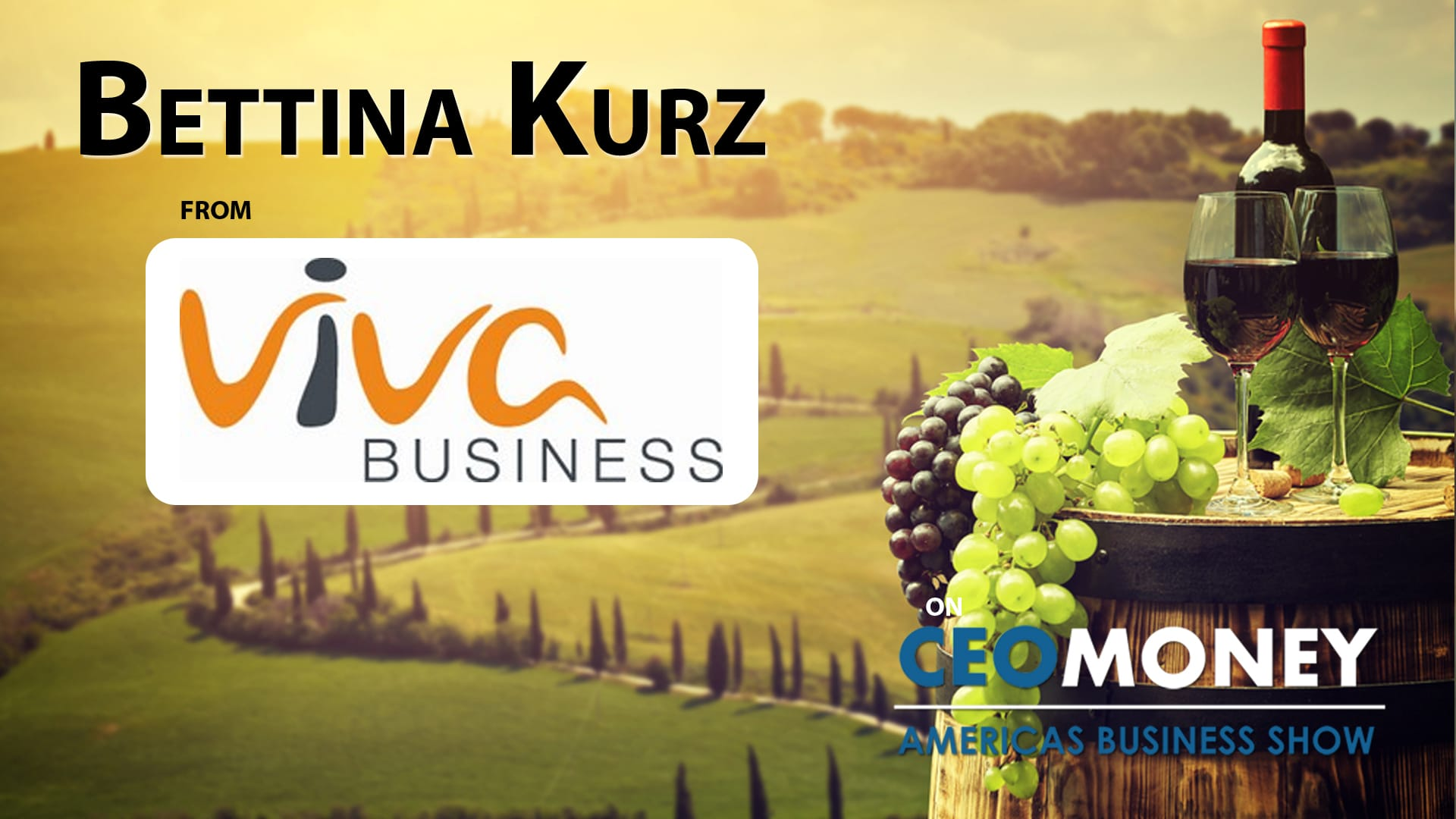Bettina Kurz from Viva Business facilitates buying wineries as an alternative investment